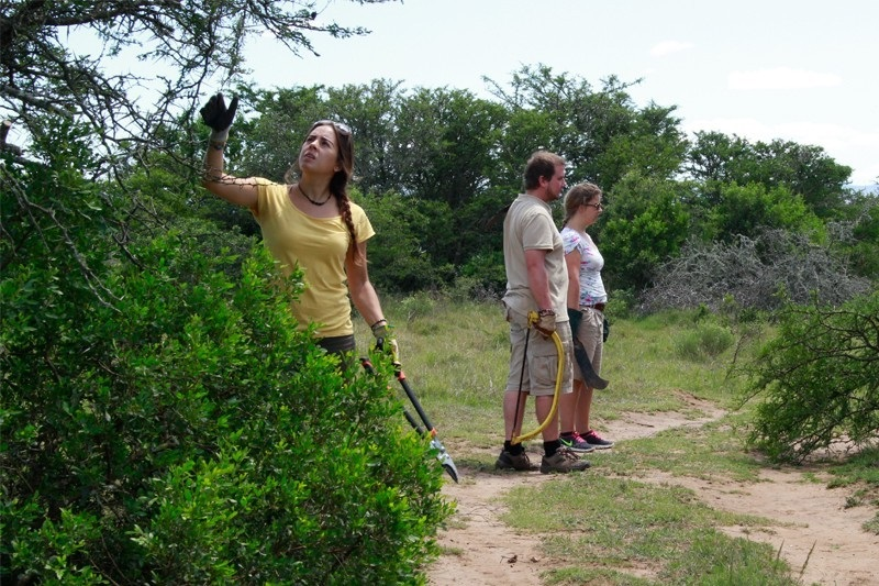 Conservation project Zuid Afrika